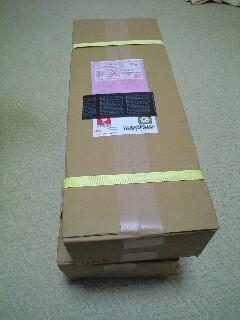 20080805u2.JPG