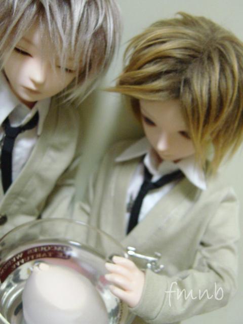 20081019_egg1.jpg