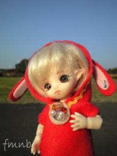 hato20091107_04.jpg